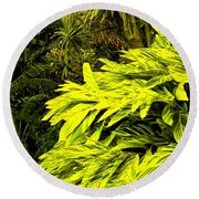 Croton Cascading Down The Hillside Round Beach Towel