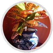 Croton In Talavera Pot Round Beach Towel