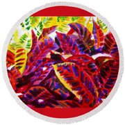 Crotons Sunlit 1 Round Beach Towel