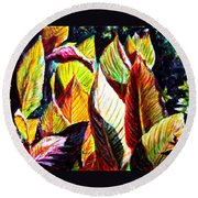 Crotons Sunlit 2 Round Beach Towel