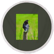 Crow 7 Round Beach Towel