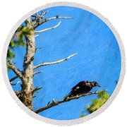 Crow In An Old Tree Round Beach Towel