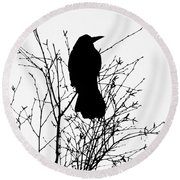 Crow Rook Perched In A Tree With Pare Branches In Winter Round Beach Towel