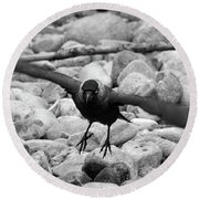 Crow Takes Off Round Beach Towel