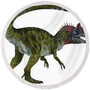 Cryolophosaurus Dinosaur Tail Round Beach Towel