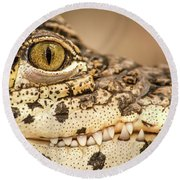 Cuban Croc Smile Round Beach Towel