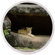 Cubs In Cave Round Beach Towel