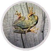 Cudjoe Key Frog Round Beach Towel