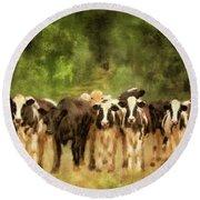 Curious Cows Round Beach Towel