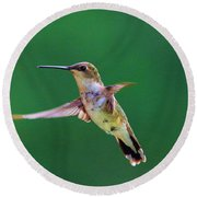 Curious Hummer Round Beach Towel