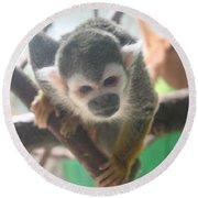 Curious Monkey Round Beach Towel
