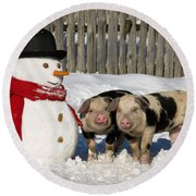 Curious Piglets And Snowman Round Beach Towel