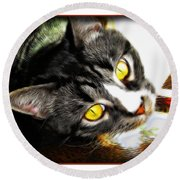 Curiousity Round Beach Towel