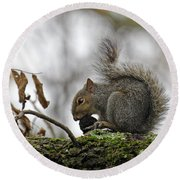 Curled Tail Round Beach Towel