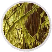 Curves In The Rainforest Round Beach Towel