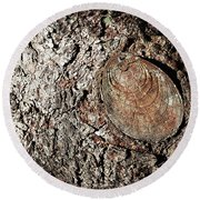 Cut Branch On Tree Trunk Round Beach Towel