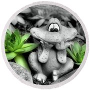 Cute Garden Frog And Succulents Round Beach Towel