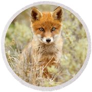 Cute Red Fox Kit Round Beach Towel