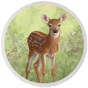 Cute Whitetail Deer Fawn Round Beach Towel by Crista Forest