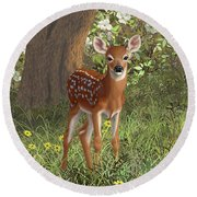 Cute Whitetail Fawn Round Beach Towel by Crista Forest