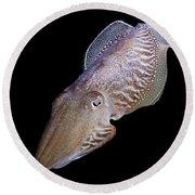 Cuttlefish At Night Round Beach Towel