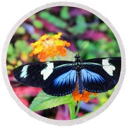 Cydno Longwing Butterfly Round Beach Towel