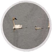 Cygnet Swim Round Beach Towel