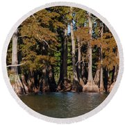 Cypress Grove Five Round Beach Towel