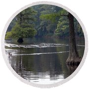 Cypress Lake Round Beach Towel