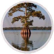 Cypress Tree On Reelfoot Lake Round Beach Towel