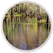 Cypress Trees Along The Hillsborough River Round Beach Towel