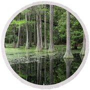 Cypresses In Tallahassee Round Beach Towel