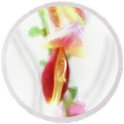 Cytisus Scoparius Firefly Ginster Round Beach Towel