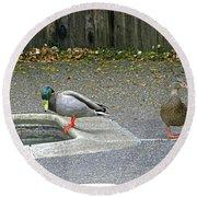 D-a0048 Mallard Ducks In Our Yard Round Beach Towel
