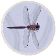 D7b6337 Dragonfly On Sonoma Mountain Round Beach Towel
