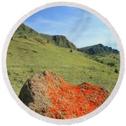 Da5872 Lichen Covered Rock Below Abert Rim Round Beach Towel