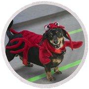 Dachshund Lobster Round Beach Towel