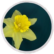 Daffo The Dilly Round Beach Towel