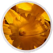 Daffodiil Flowers Evening Glow 9 Contemporary Modern Art Print Giclee Round Beach Towel
