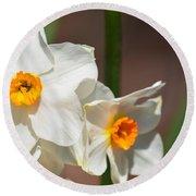 Daffodil Dazzle Round Beach Towel