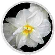 Daffodil Diagonal Round Beach Towel