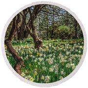 Daffodil Hill Gardens Round Beach Towel