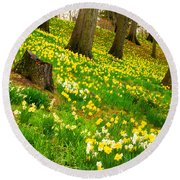 Daffodil Hill Round Beach Towel