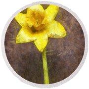 Daffodil Pencil Round Beach Towel