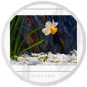 Daffodil Poster Round Beach Towel