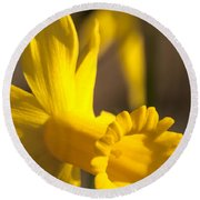 Daffodil Yellow Round Beach Towel
