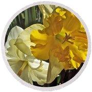 Daffodils 4 Round Beach Towel