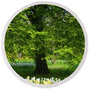 Daffodils And Narcissus Under Tree Round Beach Towel