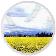 Daffodils By The Million Round Beach Towel