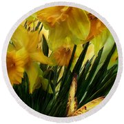 Daffodils - First Flower Of Spring Round Beach Towel